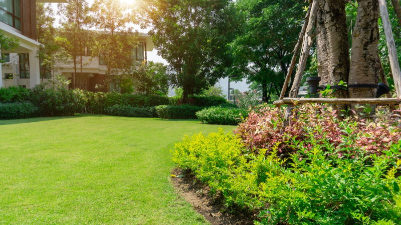 bright green lawn